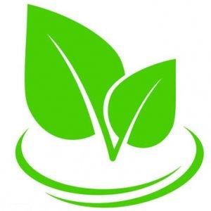 Za vegetarijance in vegane - za zelen način življenja