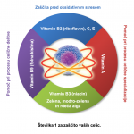 cell_diagram_1